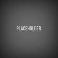 Стилизация placeholder
